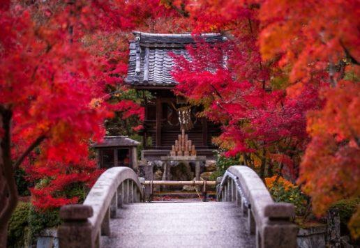 京町家ちよせ 永観堂禅林寺