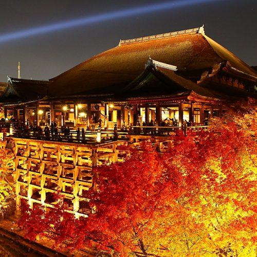 京町家ちよせ 清水寺ライトアップ
