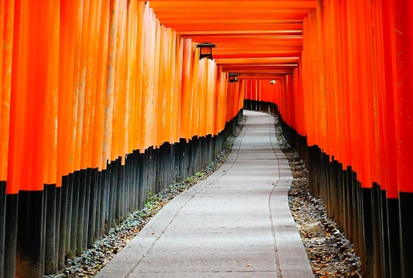 京都観光地 伏見稲荷大社 千本鳥居